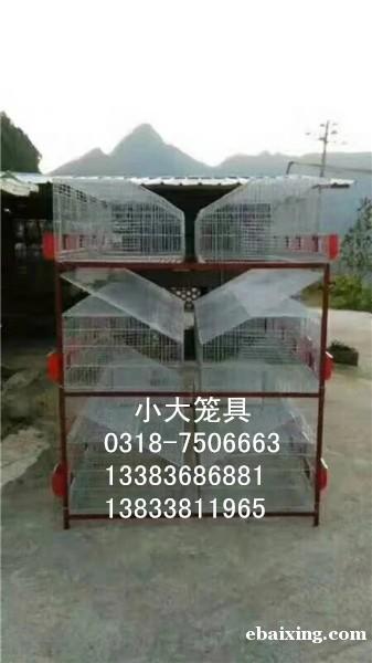 鸡笼鸽子笼兔子笼鸟笼狗笼运输笼运输筐鸽子笼兔子笼狐狸笼鹌鹑笼