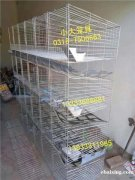 鸽子笼兔子笼鸡笼果子狸笼鹌鹑笼狐狸笼运输笼猫笼狗笼鸟笼鹧鸪笼