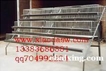 经销鸽子笼 兔子笼 运输笼 鹧鸪笼 鹌鹑笼 宠物笼 育雏鸡笼